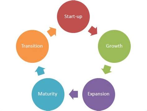 Differentiation Strategy with a Product Life Cycle Focus